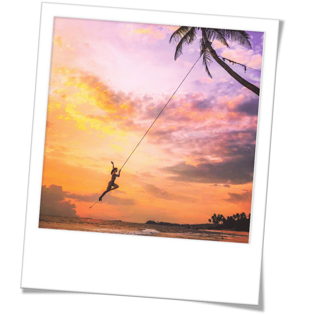 travel influencer : palm tree rope swing